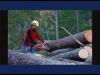 Embedded thumbnail for Wir bringen Natur nach Hause - Die LARIX Philosophie
